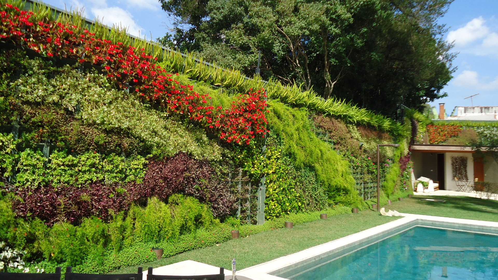 jardim vertical em muro:JARDIM VERTICAL, INSPIRE-SE